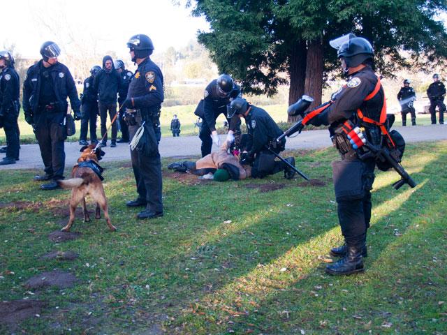 Police Raid and Destroy Occupy Santa Cruz Encampment in San Lorenzo Park